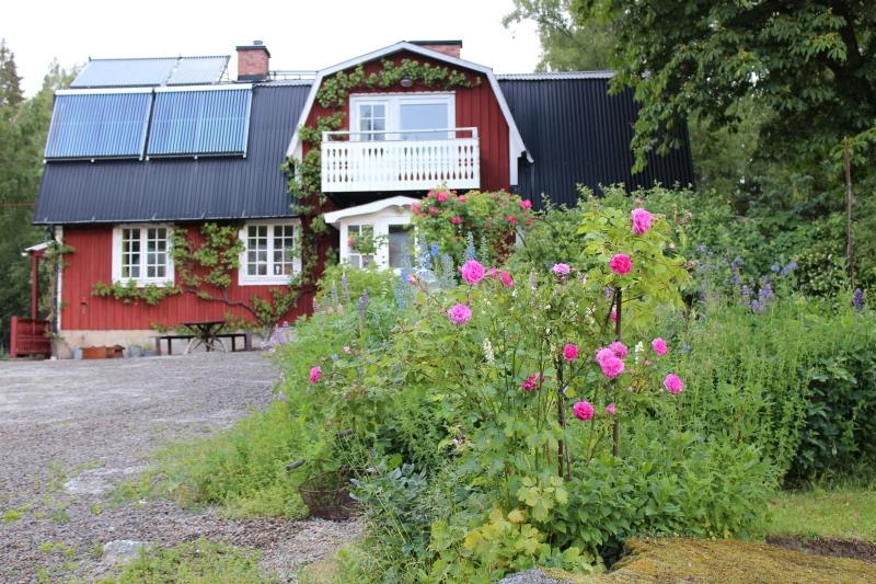 Rosens dag 2014 på Stensjöäng.