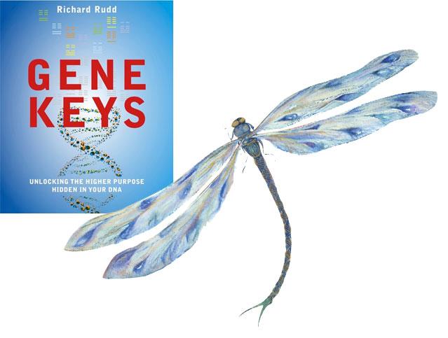 Genekeys book